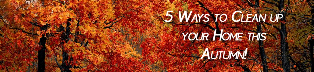 5 Ways to clean up your home this autumn